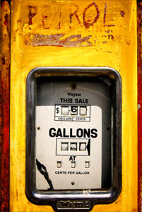 Petrol (Yellow Detail)